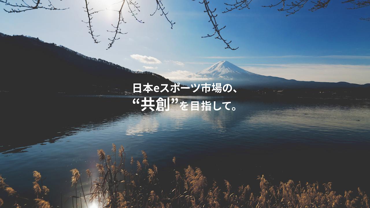 fv_lp-02